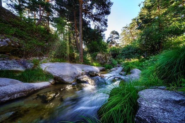 La lumière du soleil traverse les arbres et illumine l'eau de la rivière. navacerrada.