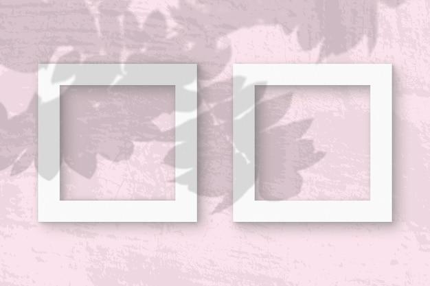 La lumière naturelle projette les ombres de la branche rowan sur 2 cadres carrés de papier texturé blanc