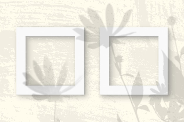 La lumière naturelle projette les ombres d'une fleur de topinambour sur 2 cadres carrés de papier texturé blanc