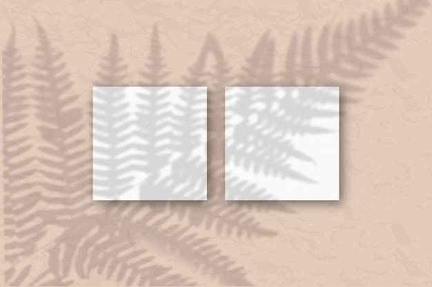 La lumière naturelle projette des ombres d'herbe sur 2 feuilles carrées de papier texturé blanc se trouvant sur un fond de texture bleu