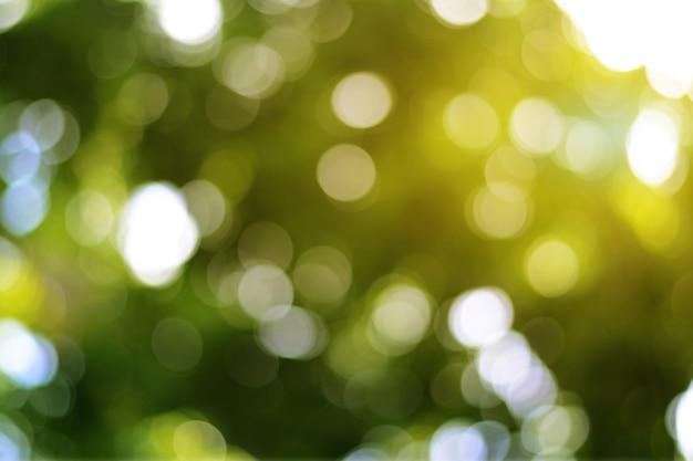La lumière orange frappe le bokeh vert bokeh flou avec de belles paillettes