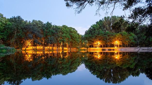 Lumières dans un parc avec arbres verts et étang
