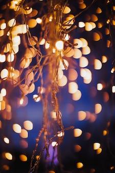 Lumières de décoration en soirée