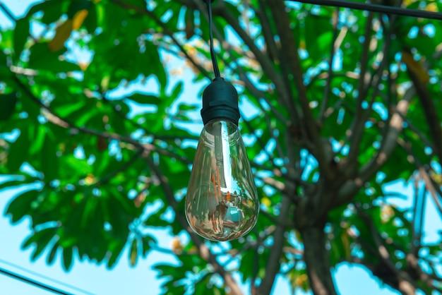 Lumières suspendues avec un arbre à l'extérieur