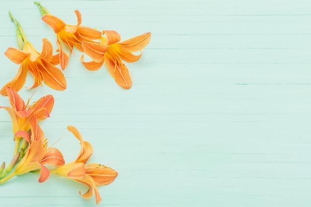 Lys orange sur bois