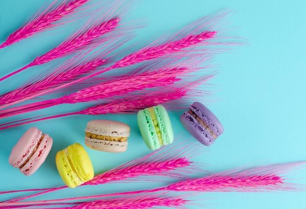 Macarons colorés et épillets roses décoratifs sur fond bleu clair. fond lay plat, frais généraux.