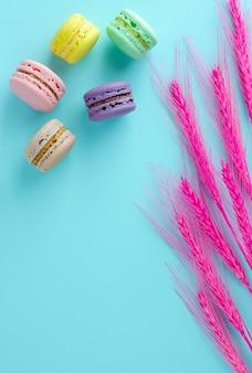 Macarons colorés et épillets roses décoratifs sur fond bleu clair. fond verticale. lay plat, frais généraux.