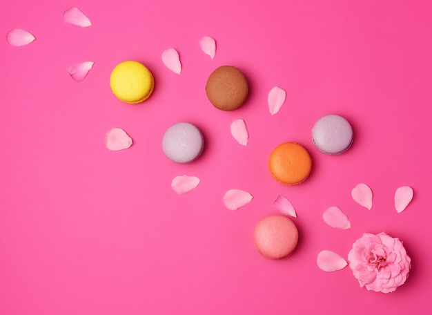 Macarons multicolores à la crème et fond rose à bouton de rose aux pétales épars