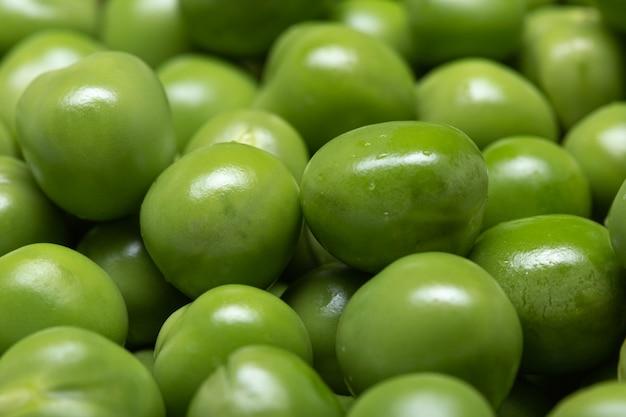 Macro de fond de pois verts. pisum sativum