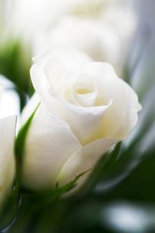 Macro mariage parfumé closeup personne