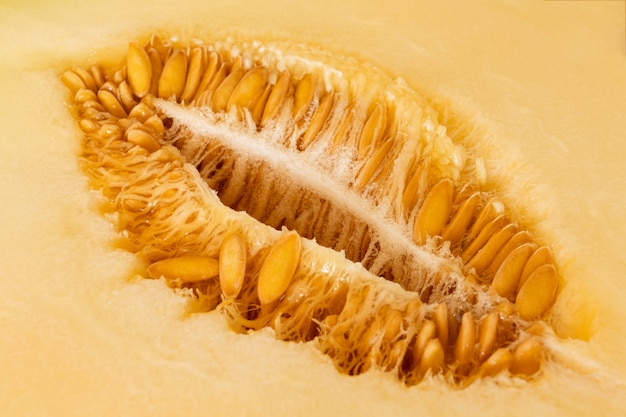 Macro photo de graines mûres de melon avec pulpe juteuse. fermer. mise au point sélective.