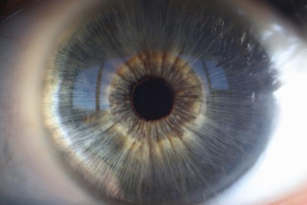 Macrophotographie d'iris bleu de gros plan de l'oeil féminin