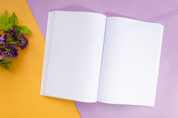 Magazine de maquette vue de dessus avec fond coloré