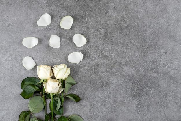 Magnifique bouquet de roses blanches posé sur du marbre.