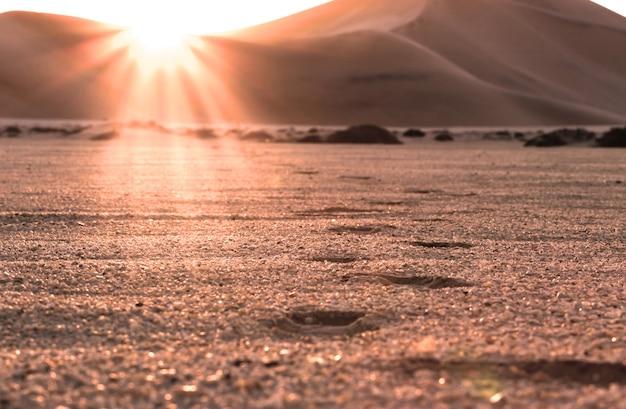 Magnifique coucher de soleil dans le désert et empreintes de pas dans le sable