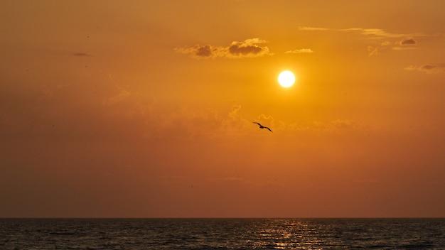 Magnifique coucher de soleil sur l'océan. sotchi, russie