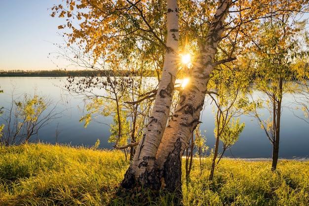 Magnifique coucher de soleil sur la rivière ob en sibérie occidentale.