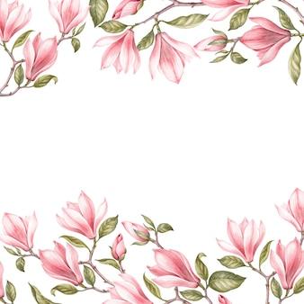 Magnifique frontière de magnolia.
