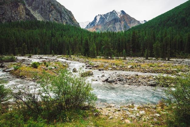 Magnifique jet d'eau rapide dans le ruisseau de montagne sauvage.