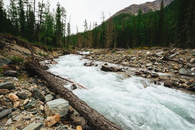 Magnifique jet d'eau rapide du glacier dans un ruisseau de montagne sauvage avec des pierres.