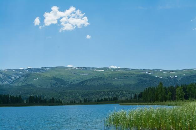 Un magnifique lac de montagne avec des roseaux entouré de chaînes de montagnes et de forêts impénétrables.