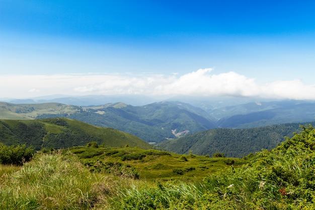 Magnifique paysage de montagnes des carpates ukrainiennes.