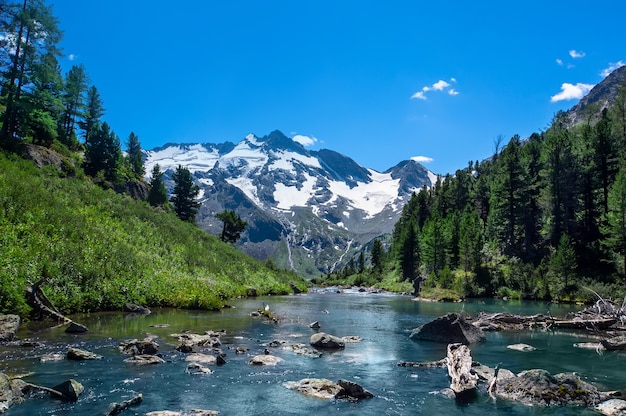 Le magnifique paysage naturel des montagnes de l'altaï. sibérie méridionale, russie. rivière de montagne qui coule en arrière-plan les sommets enneigés