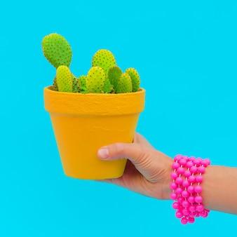 La main avec des accessoires de mode tient un cactus. art conceptuel minimal de bonbons