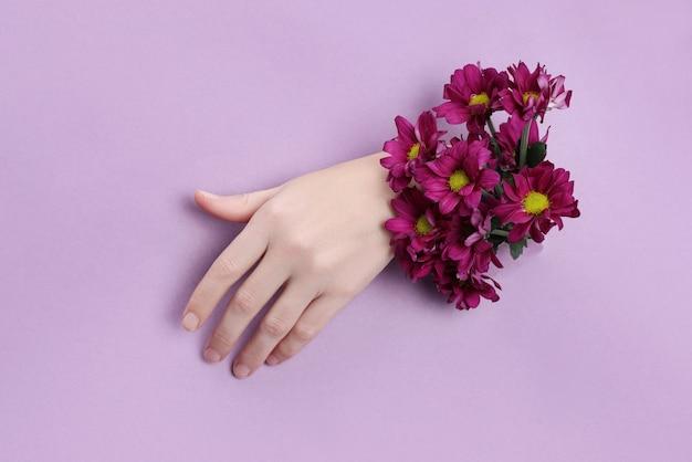 Main de beauté avec des fleurs dans un trou dans un fond de papier violet. cosmétiques nature pour les mains, extrait naturel de fleurs, hydratant et adoucissant la peau