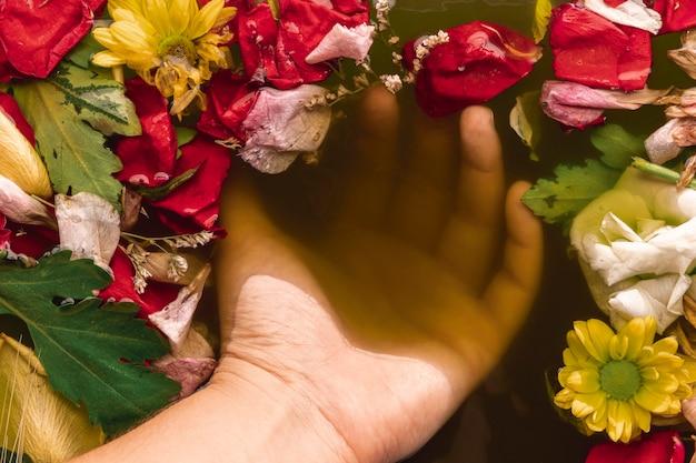 La main dans l'eau avec des fleurs colorées