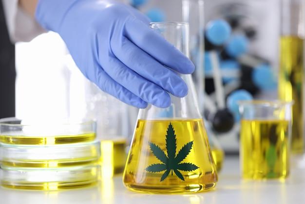 La main dans le gant en caoutchouc tient le ballon avec de l'extrait de marijuana au laboratoire pharmaceutique libre