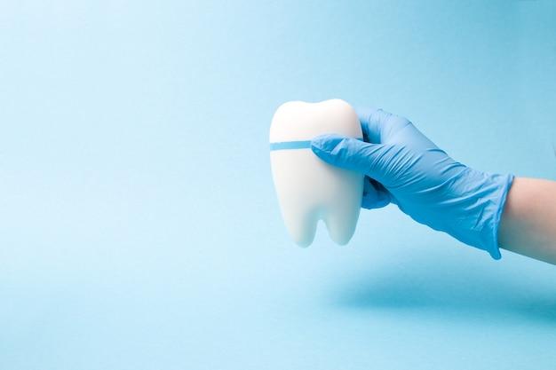 La main dans un gant médical en caoutchouc jetable bleu tient un modèle de dent sur une surface bleue