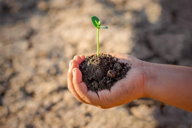 La main droite des enfants tenait des semis.