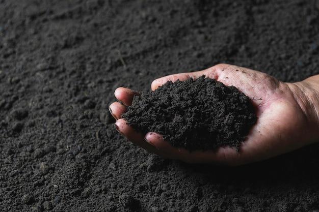 Main du mâle tenant le sol dans les mains pour la plantation