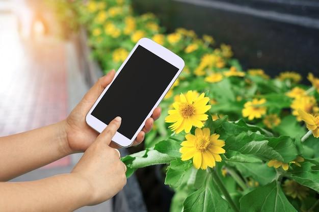 Main et écran tactile pour prendre une photo avec une belle fleur.