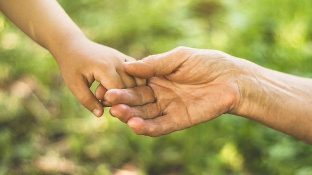 Main de l'enfant et grand-mère de la vieille main