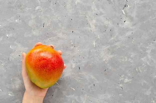 La main des enfants tient une mangue brésilienne juteuse mûre des tropiques sur une table grise. fruits frais exotiques.