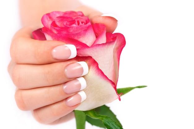 Une main féminine avec une belle manucure française tient une fleur rose. isolé sur blanc