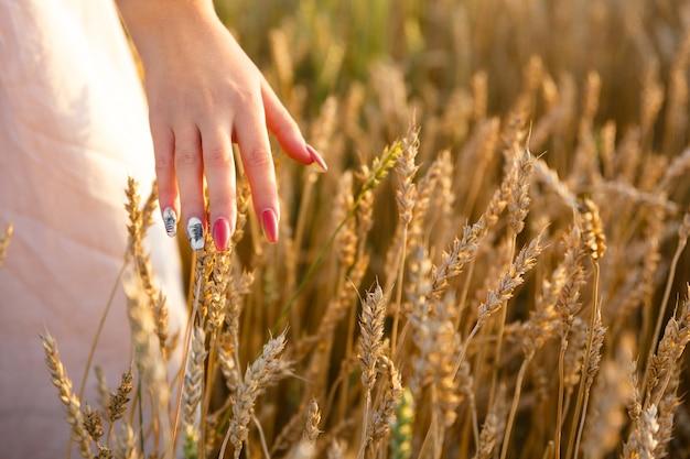 Main féminine caressant les épis de blé dans le champ de blé
