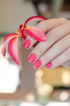 Main féminine avec la conception des ongles roses tenant une fleur rose.
