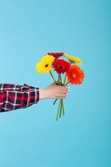 Main féminine dans une chemise à carreaux tenant un bouquet de gerbers jaune rouge et orange sur un mur bleu. concept de cadeau et salutations. espace promo