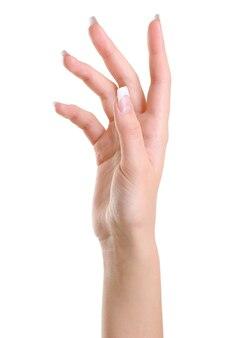 Une main féminine élégante avec de longs doigts de beauté isolés sur blanc