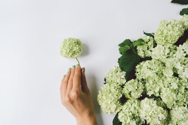 Main féminine faisant la décoration de fleurs vertes sur fond blanc