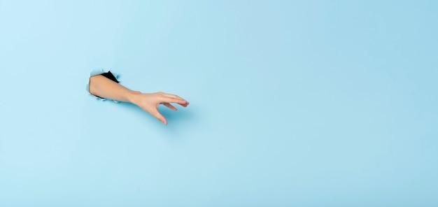 Une main féminine faisant des gestes attrape quelque chose sur fond de bannière bleu. image panoramique