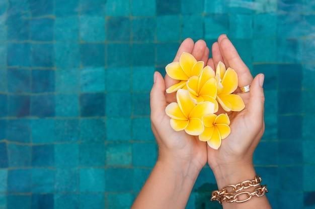 Main féminine avec frangipanier sur le fond d'une piscine bleue