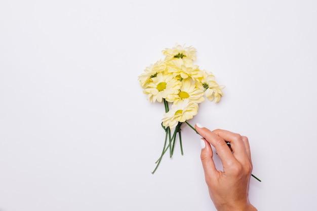 Une main féminine pose un bouquet de marguerites sur une table blanche