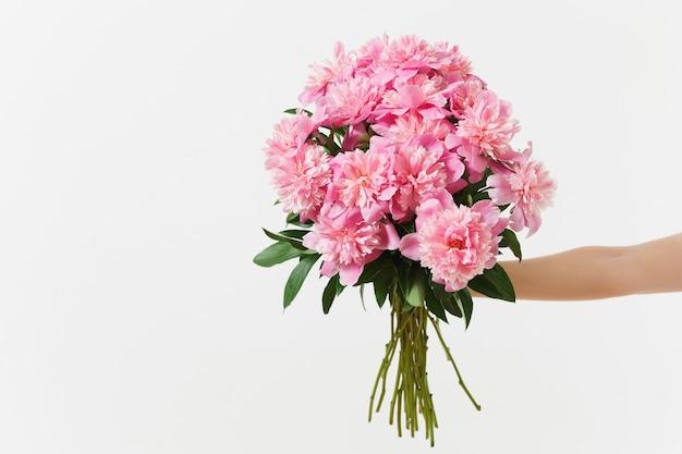 Main féminine tenant un beau bouquet de fleurs de pivoines roses isolées sur fond blanc. saint-valentin, concept de vacances de la journée internationale de la femme. espace de copie de la zone publicitaire vers la publicité