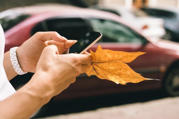 Main féminine tenant un téléphone portable et close-up de feuilles tombées à l'automne