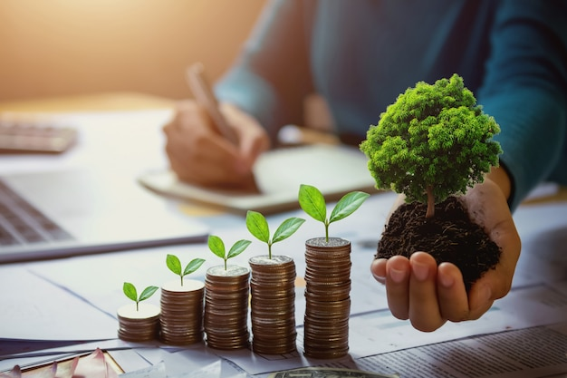 Main de femme d'affaires tenant l'arbre avec des plantes qui poussent sur les pièces de monnaie. concept économiser de l'argent et jour de la terre