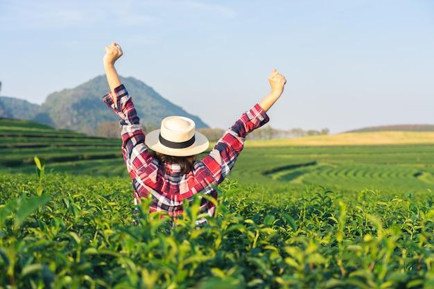 Main de femme asiatique ramasser les feuilles de thé de la plantation de thé,